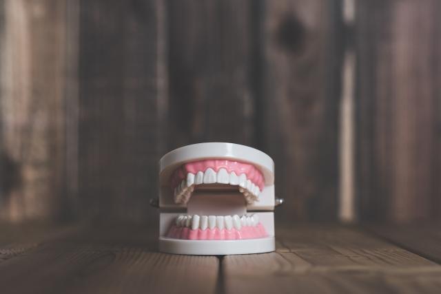 「病原菌」の攻撃力を弱めると共に、如何に「歯」や「歯周組織」の「抵抗力」が勝る状態にしておくかが大切です。